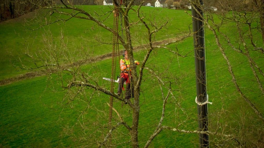 Drohnen-Service-zur-HD-Liveinspektion-in-der-Forstwirtschaft