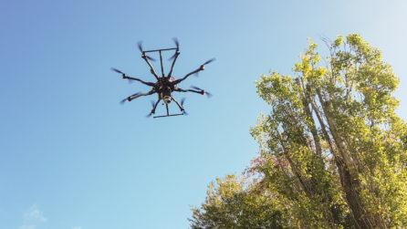 Baume-UAV-und-dotcube-Laserscanner-in-Action-LiDAR-Scan-UAV-Laserscanning-Vermessung-Nordhessen-3D-Bestandsmodellierung