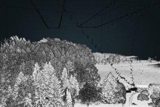 Ergebnis-GeoSLAM-ZEB-HORIZON-3D-mobile-Scanner-Viewer-1-3D-Punktwolke-Wald-Forest-Laserscanning-Forstwirtschaft