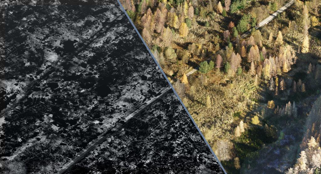 LOGXON-Grafik-klassifizierte-Punktwolke-in-Bodenpunkte-und-Nichtbodenpunkte-Digitale-Gelaendemodelle-Hoehenmodelle-Oberflaechenmodelle-DGM-DHM-DOM-Gelaendevermessung-mittels-Drohne-präzise-Geodaten-von-LOGXON